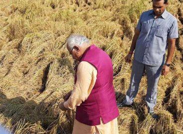 किसानों को मोदी के पैसे का इंतजार  केंद्र सरकार का दावा : साढ़े 14 लाख किसानों को करोड़ों बांट दिये