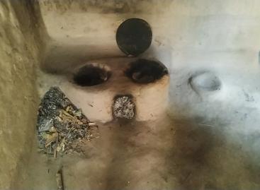 छबई की मरहूम बेटी का एकमात्र जिंदा बचा बेटा उनकी जिन्दगी का सहारा है जिसके शरीर पर चर्मरोग हो गया है। सांप की केंचुल सा दिखने वाला ये रोग बढ़ता ही जा रहा है और न जाने किस दिन छबई के अंतिम सहारे को भी लील ले।